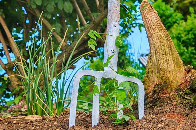 Welk tuingereedschap heb ik nodig om mijn tuinonderhoud zelf uit te voeren?