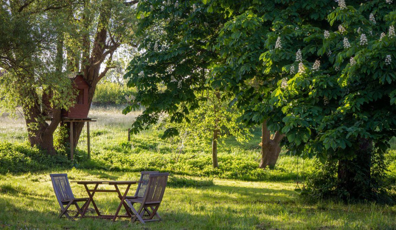Het hele jaar door van de tuin genieten?